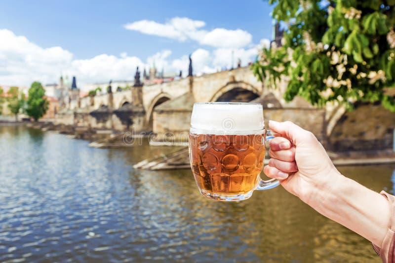 Hand med en råna av det tjeckiska ölet mot bakgrunden av rödingen arkivfoton