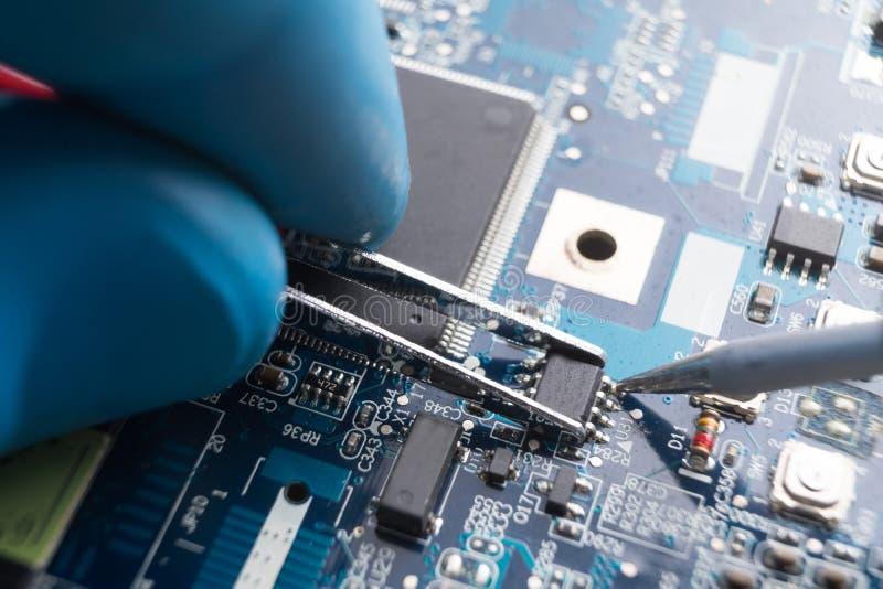 Hand med pincett som på plats rymmer chipen, lödkolvlödmetall det white för skruvmejsel för reparation för adapterdatordiagram is royaltyfri bild