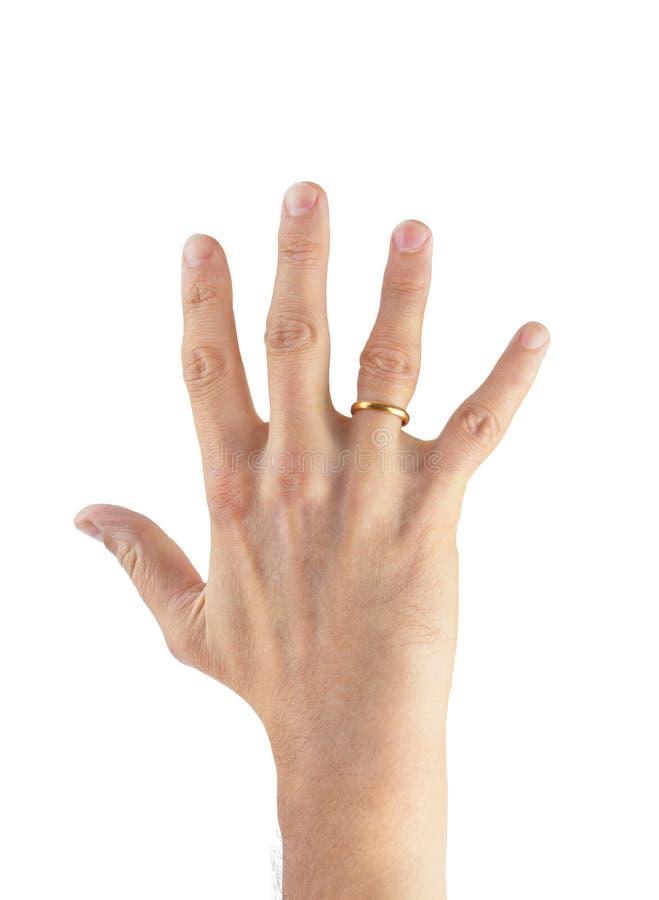 Hand med vigselringen royaltyfri fotografi