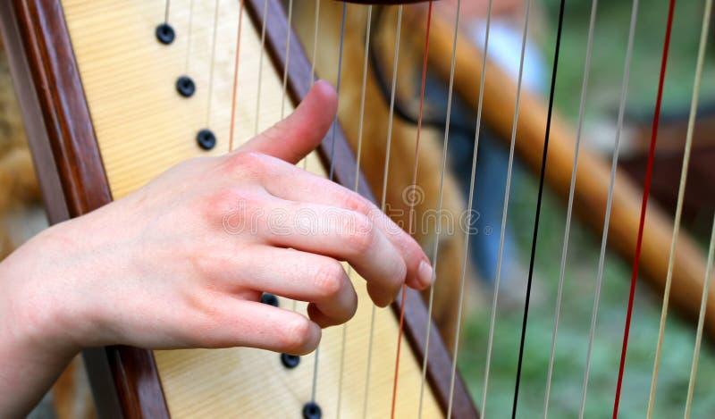 Hand, medan plocka raderna av en harpa royaltyfri fotografi