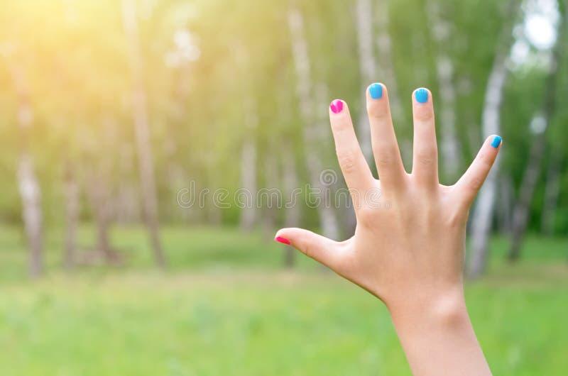 Hand met geschilderde spijkers stock foto