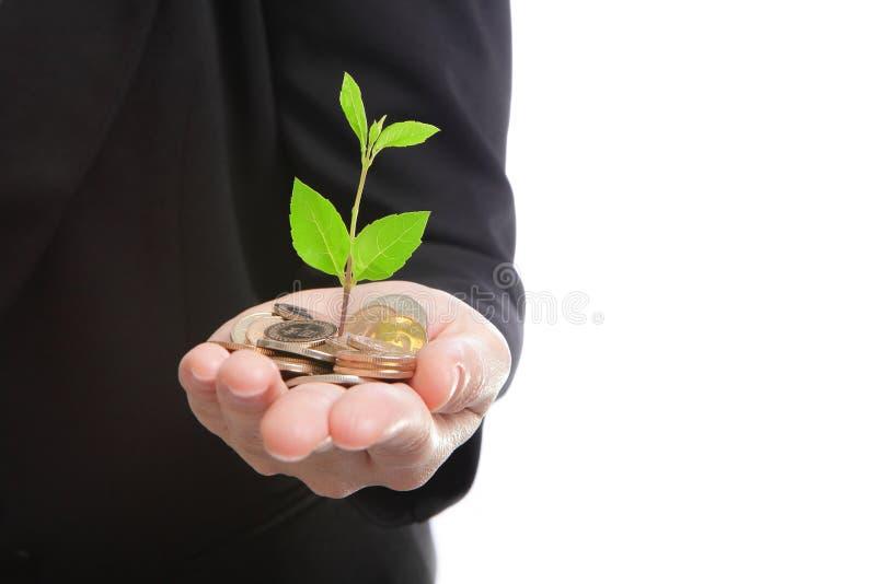 Hand met groene installatie het groeien van geld stock afbeeldingen