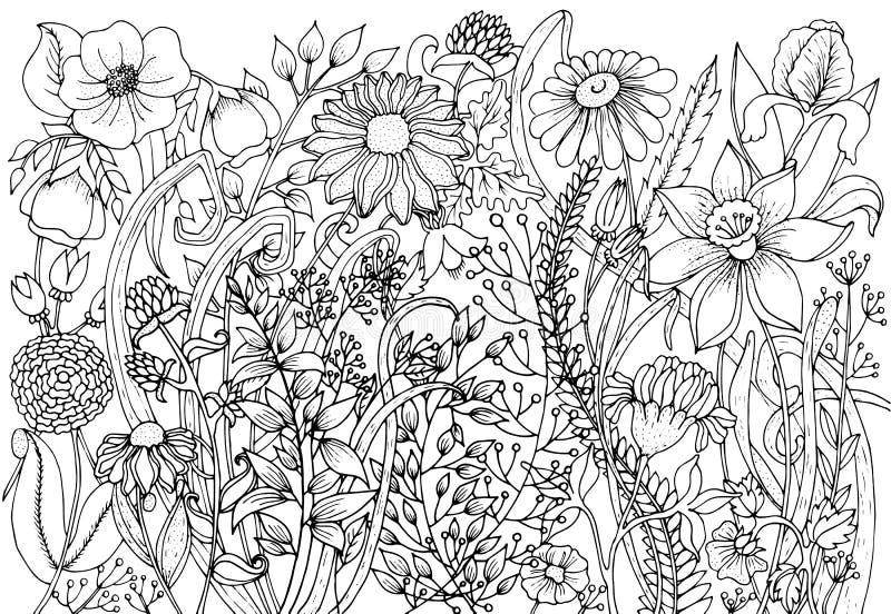 Hand met inktachtergrond wordt getrokken met krabbels, bloemen, bladeren dat Het aardontwerp voor ontspant en meditatie vector illustratie