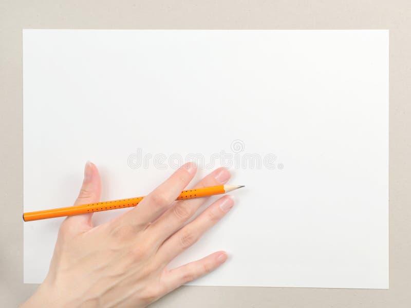 Hand met potlood op leeg document blad stock foto's