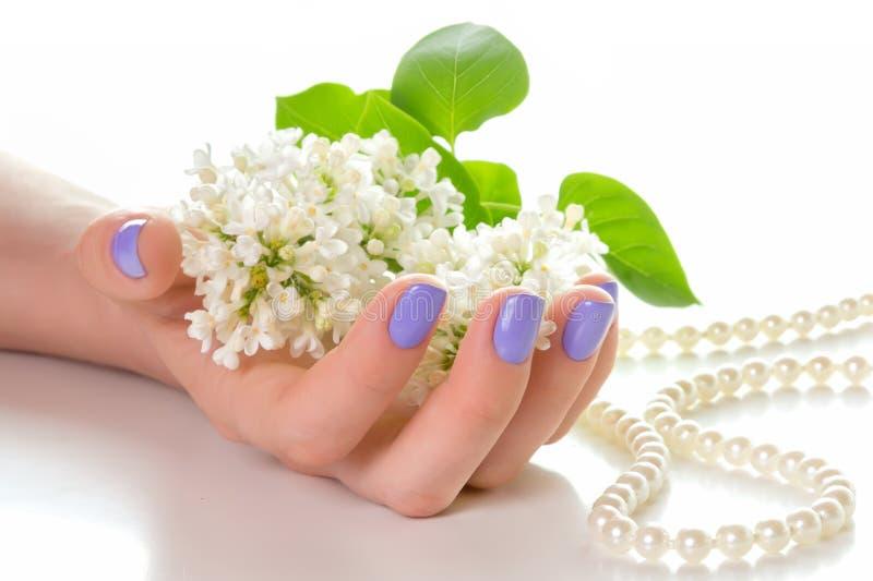 Hand met purpere manicure stock fotografie