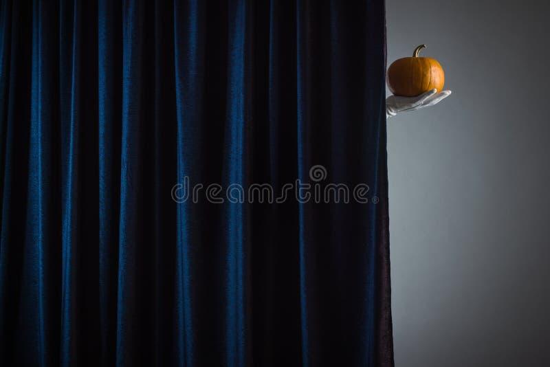 Hand met rijpe pompoen stock afbeelding