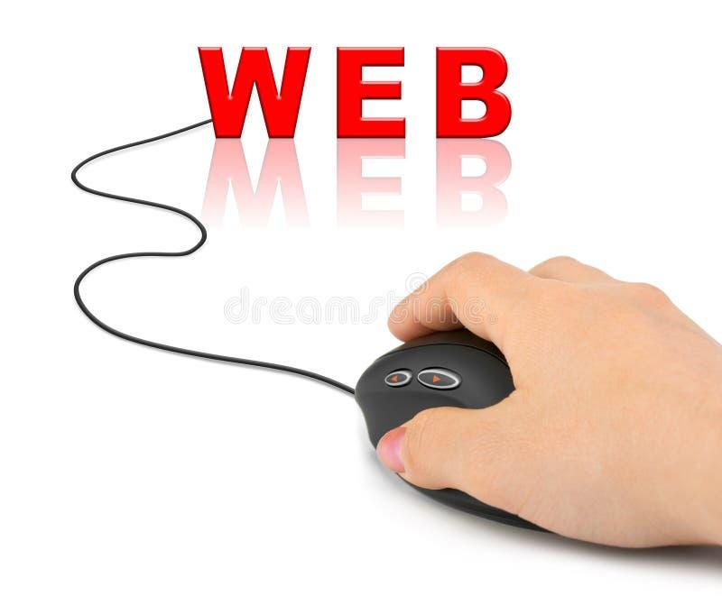 Hand mit Computermaus und Wort WEB lizenzfreie stockfotografie