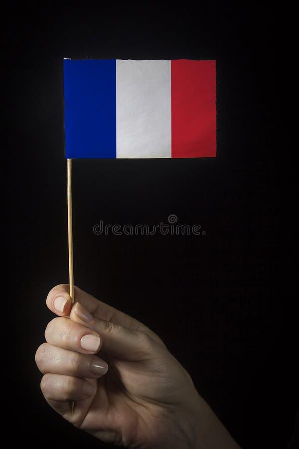 Hand mit der Flagge Frankreichs lizenzfreie stockfotografie