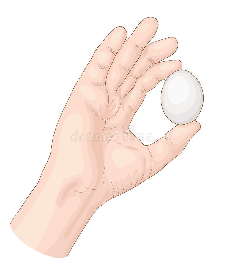 Hand mit Ei. lizenzfreie abbildung