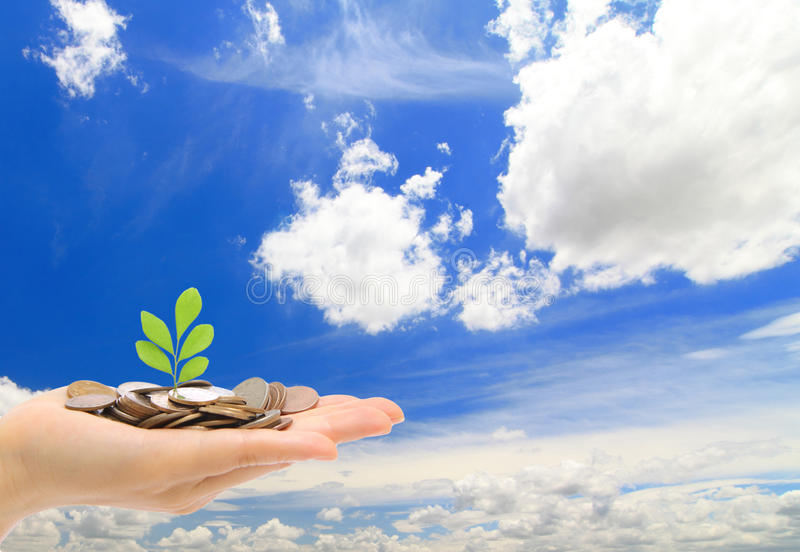 Hand ,money and green sapling with blue sky and cl stock images