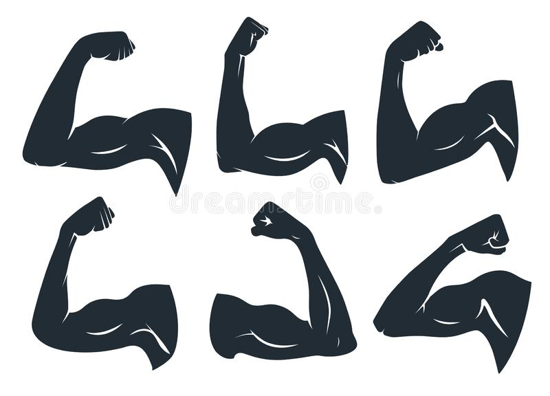 Hand muscle silhouette. Strong arm muscles, hard biceps and power gym vector stencil icons set. Hand muscle silhouette. Strong arm muscles, hard biceps and power vector illustration
