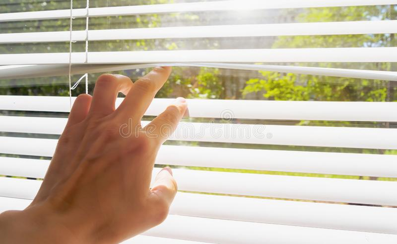 Hand opens with fingers blinds, outside window there is sunlight and green trees. Concept hot summer and scorching sun royalty free stock photography