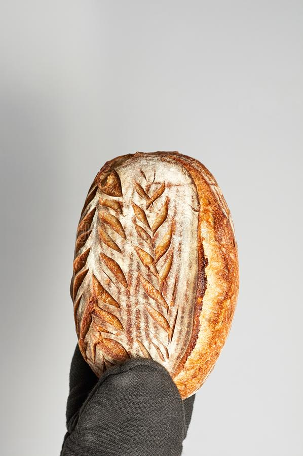 Hand in oven mitt holding freshly baked Artisan whole grain bread on a gray background stock images