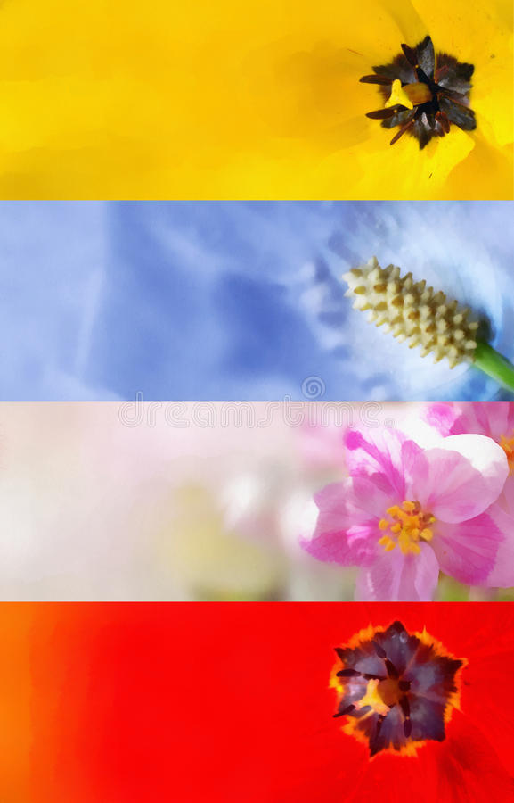 Hand painted flower banners royalty free stock images