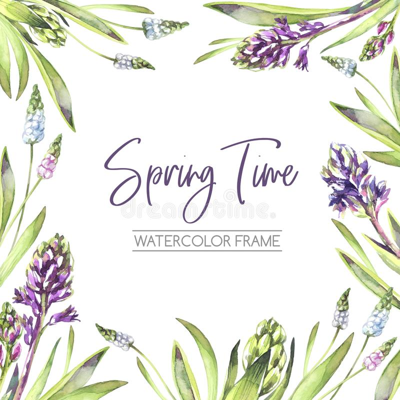 Hand painted square frame with Hyacinths flowers and leaves. Spring watercolor illustration in violet shades. Botanical. Texture. Can be used for a poster vector illustration