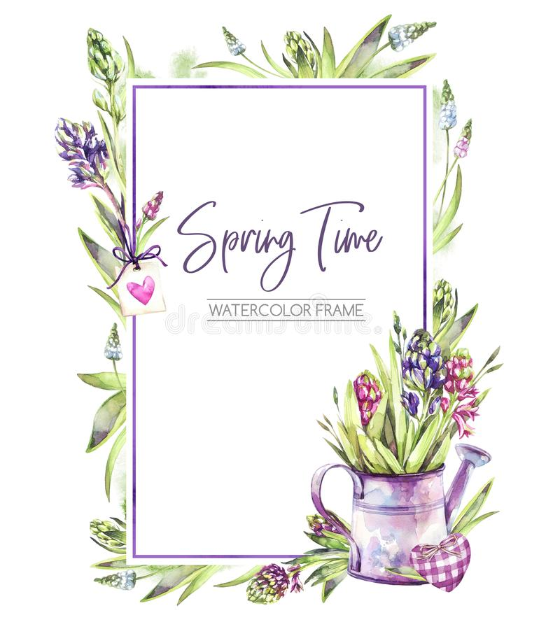 Hand painted vertical frame with Hyacinths flowers, leaves and watering can. Spring rustic watercolor illustration in royalty free illustration