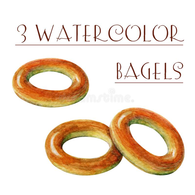 Hand painted watercolor bagels. Watercolor Bagel isolated on white background stock illustration