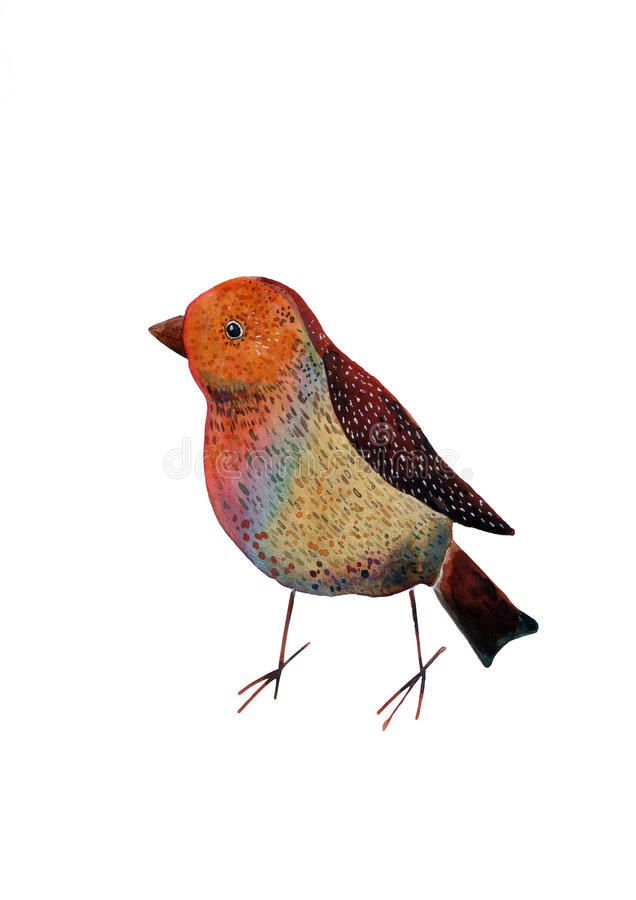 Hand Painted watercolor bird Illustration stock images