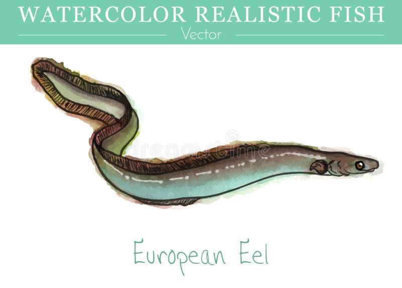 Hand painted watercolor edible fish. Vector design stock illustration