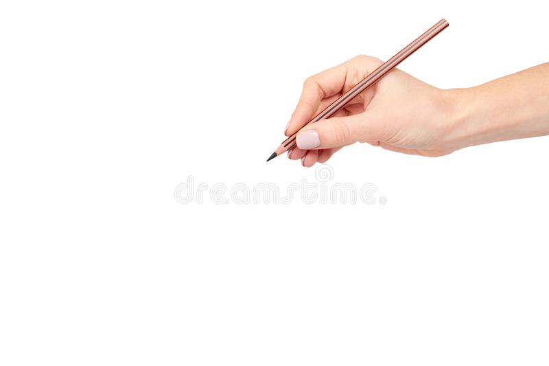 Hand with pencil, drawing or writinng gesture. Isolated on white background. Copy space template, arm, art, business, closeup, color, concepts, creativity stock photos