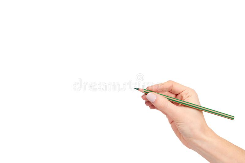 Hand with pencil, drawing or writinng gesture. Isolated on white background. Copy space template, arm, art, business, closeup, color, concepts, creativity stock image