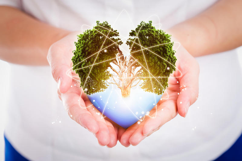 Hand people save the earth protect environmental concept. royalty free stock image
