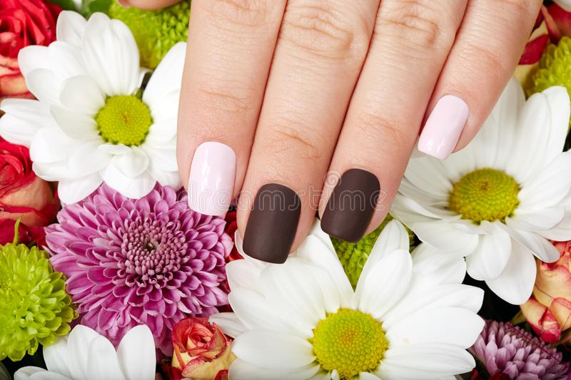 Hand with beautiful pink and purple manicured nails. Hand with pink and purple manicured nails and a bouquet of flowers royalty free stock photography