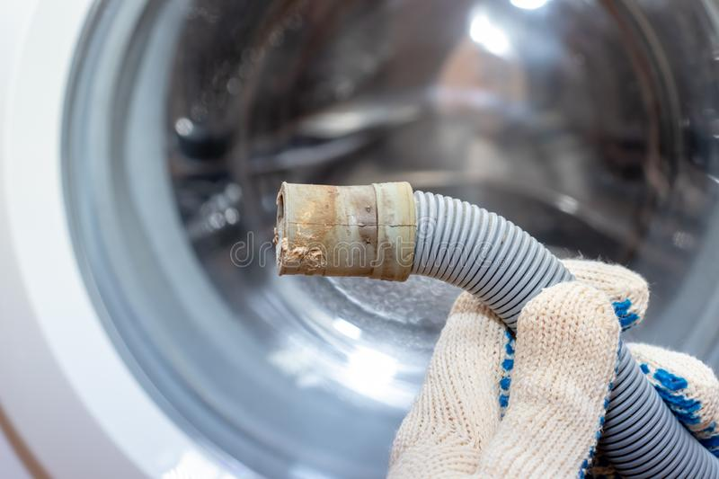 Hand of a plumber holding a broken flexible drain hose of washing machine, clogged and covered with lime scale, dirt limescale and. Rust royalty free stock images