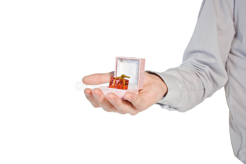 Hand With Present Royalty Free Stock Images