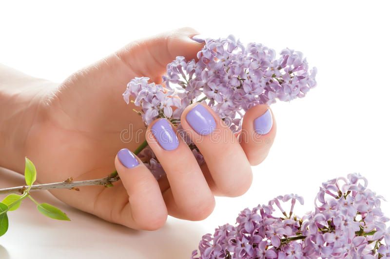 Hand with purple manicure. stock photography