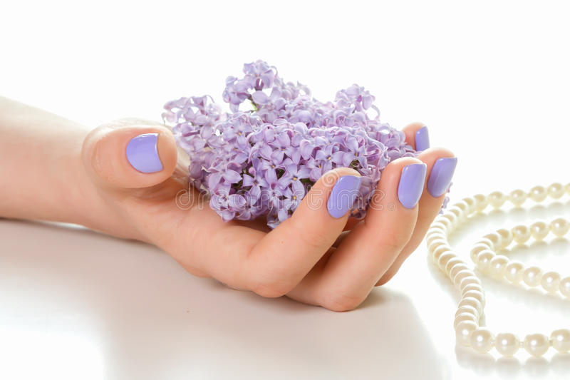 Hand with purple manicure. royalty free stock image