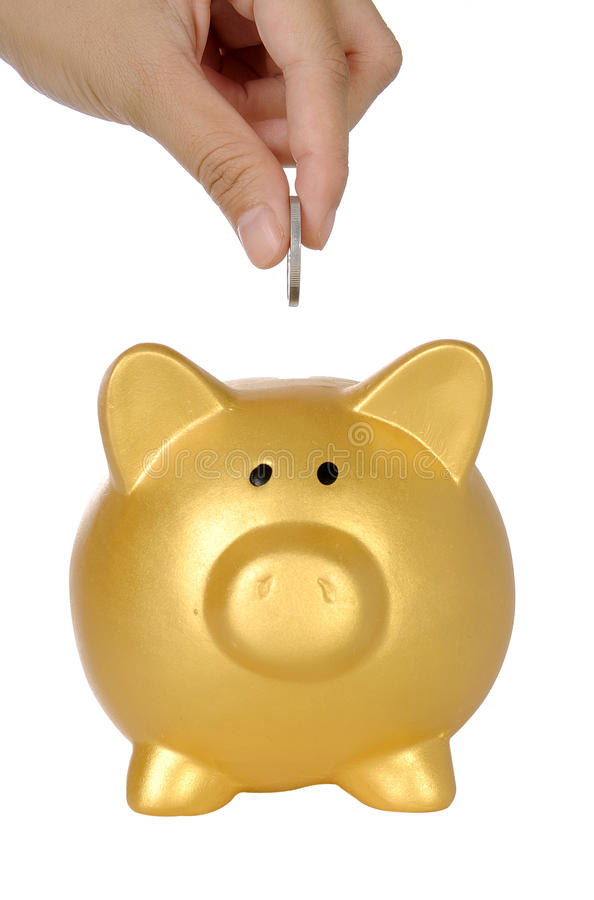 Download Hand Put Coin Into Piggy Bank Stock Photo - Image: 30863930