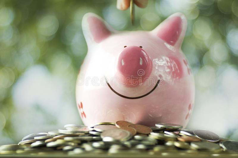 Hand put money on pink piggy bank royalty free stock photos