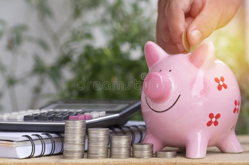 Hand put money on pink of piggy bank and pile of coins, concept in growth, save and investment. In business royalty free stock photography