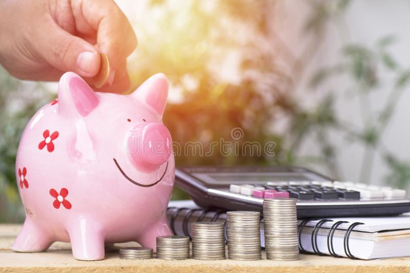 Hand put money on pink of piggy bank and pile of coins, concept in growth, save and investment. In business royalty free stock photo