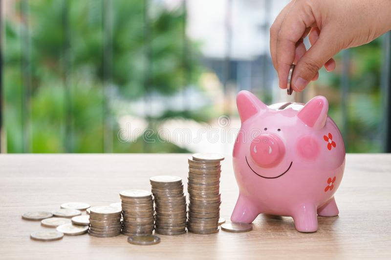 Hand putting a coin into a pink piggy bank with stack coins on w stock image