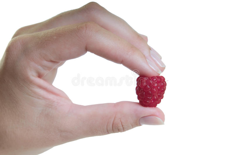 Download Hand with raspberry stock image. Image of palm, fruit - 14862451