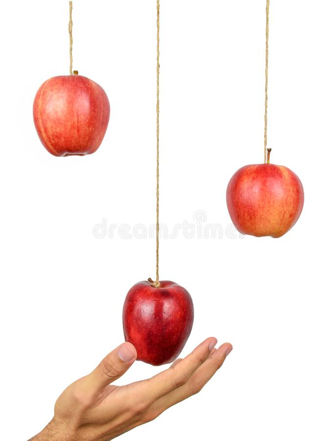 Free Hand Reach To Grab The Hanging Apple. Stock Photo - 180964630