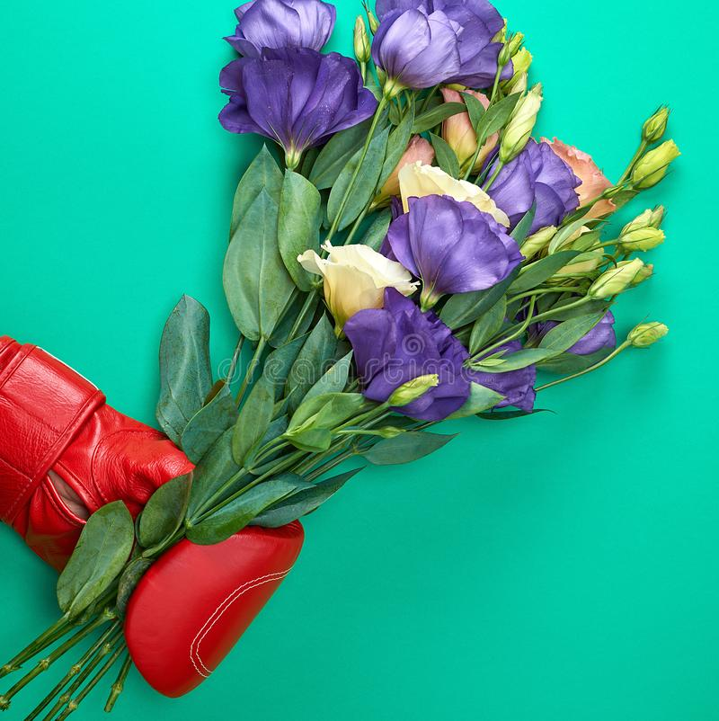 Hand in a red boxing glove holding a bouquet of flowers Eustoma Lisianthus. On a green background stock image