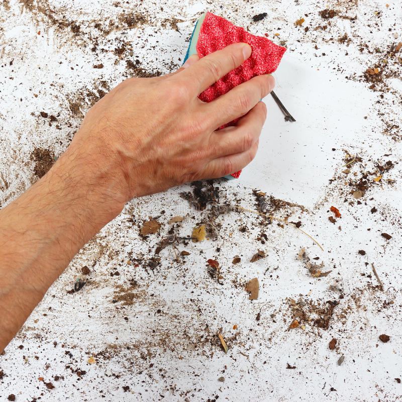 Hand with red sponge cleans dirty surface stock photos
