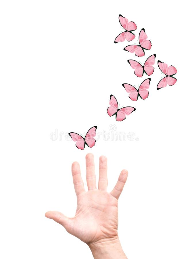 Free Hand Releases A Flock Of Butterflies. Isolated On White Stock Photos - 161064283