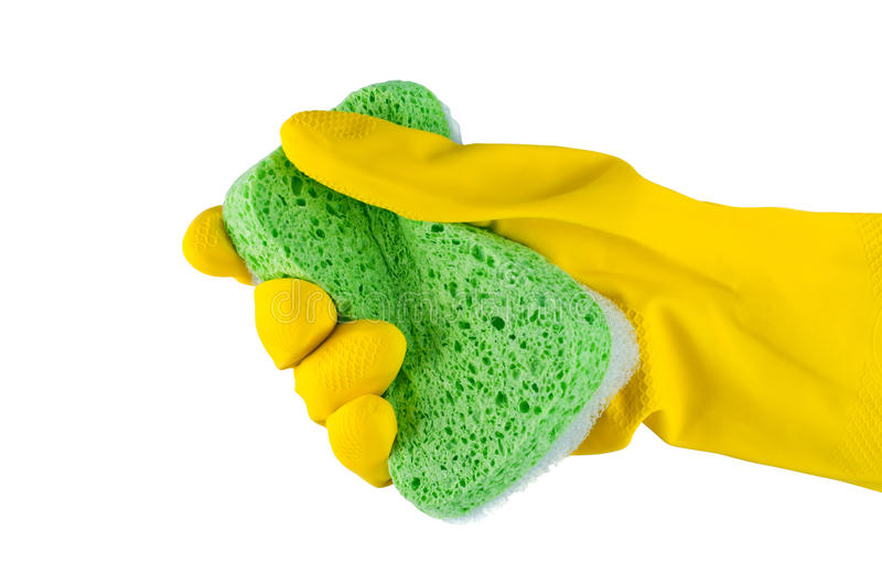 Hand in rubber glove with sponge.