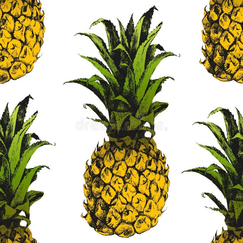 Hand sömlös dragen ananas vektor illustrationer