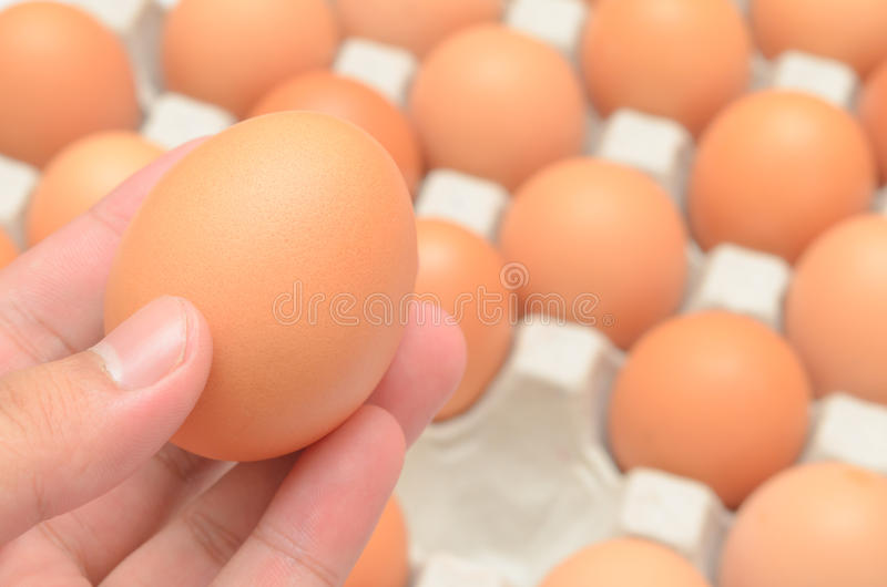Hand select egg in carton. Closeup royalty free stock photos