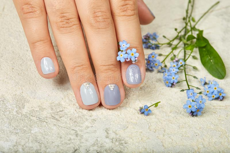 Hand with short manicured nails colored with gray nail polish. And forget me not flowers stock images