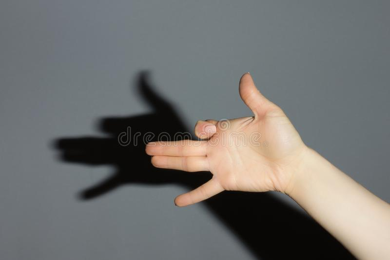 The hand shows a shadow of dog stock photo