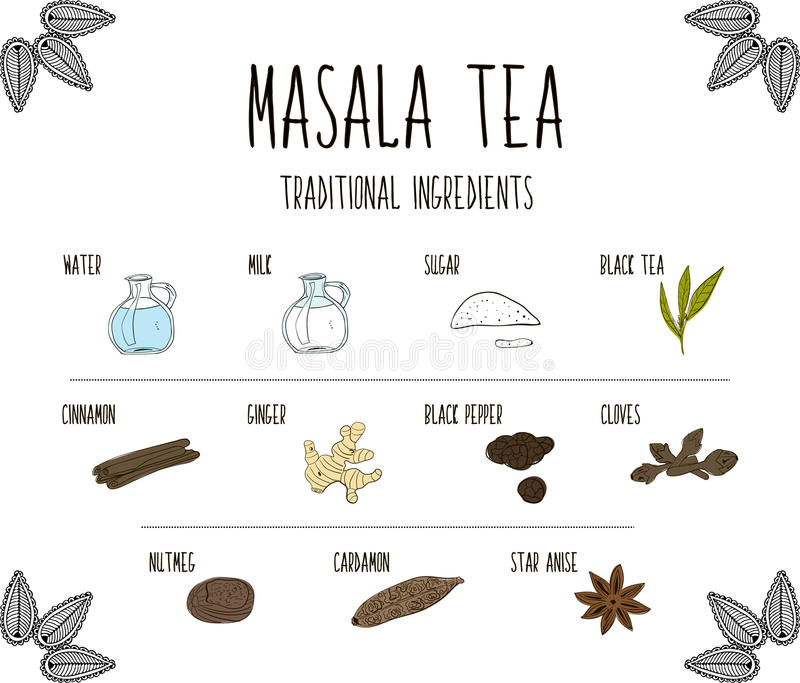Hand-sketched collection of elements of Ayurvedic spices are part of the ancient drink masala tea. Herbs and supplements Ayurveda. Vector vector illustration