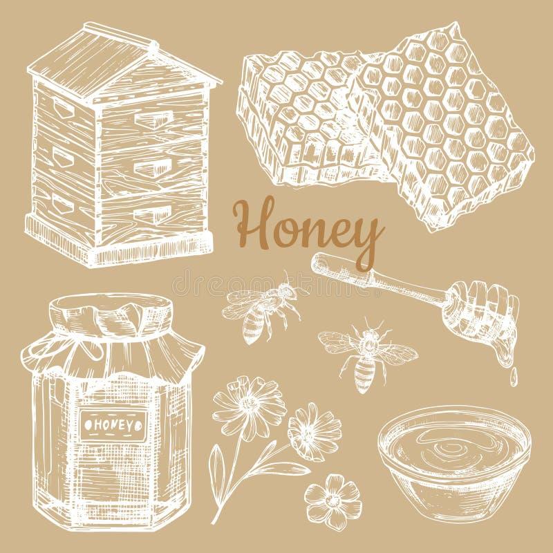 Hand sketched honey vector elements - bee, honeycombs, jars vector illustration
