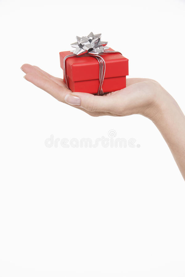 Hand With Small Wrapped Gift royalty free stock photography