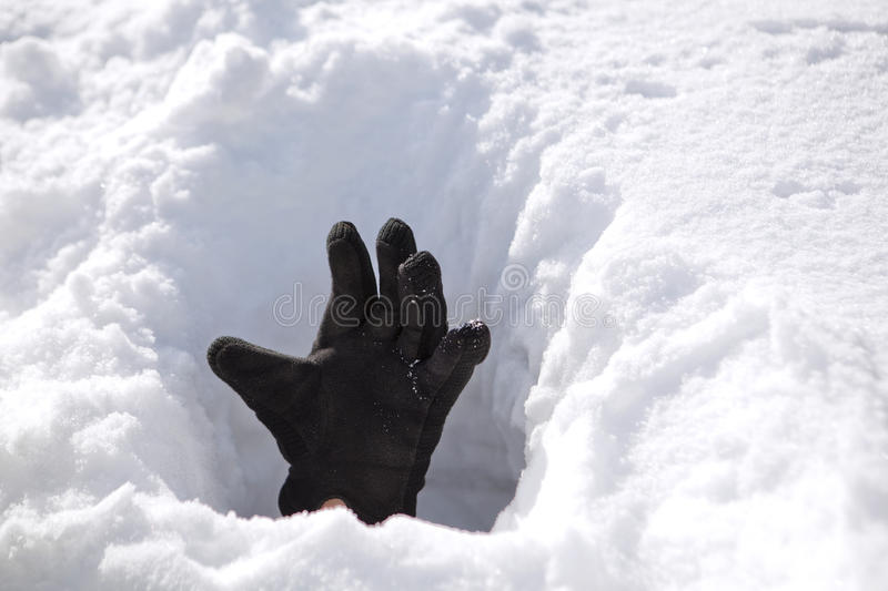 Hand in snow stock photography